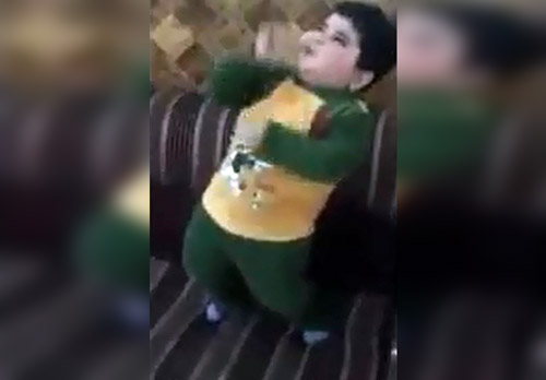 Vídeos Engraçados Whatsapp