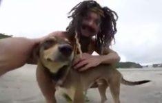 cachorro-maldito