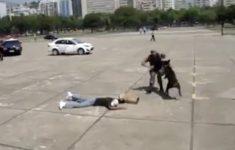 cachorro-ataca-policial-por-engano