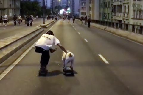 andando-de-skate-com-cao