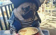 cafe-sem-pao