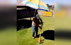 cortando grama com estilo