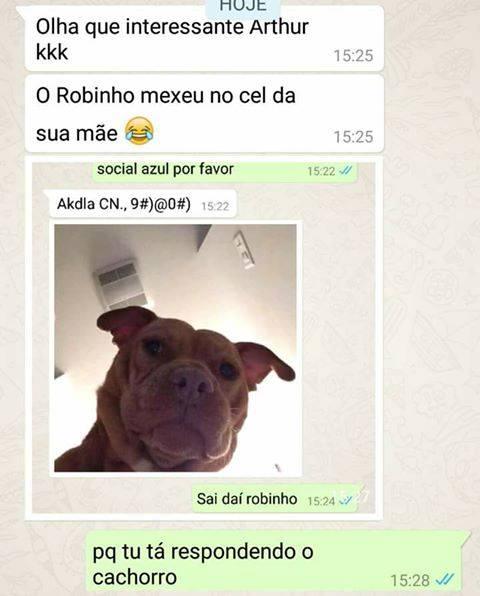 respondendo-o-cachorro