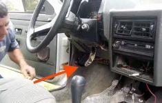 cobra-dentro-do-carro