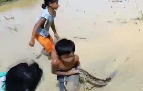 criancas-brincando-com-cobra