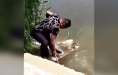 tudo-estava-normal-na-pescaria