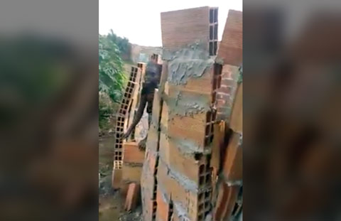 tia-esse-muro-ta-no-nivel