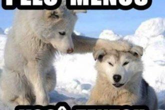 Memes: Não Existe Ateu Quando o Cachorro Pula a Cerca